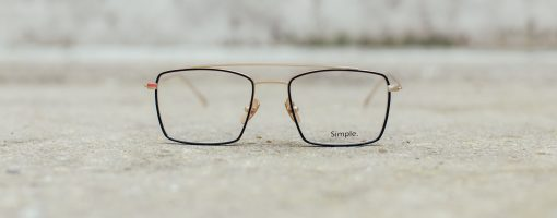 Simple Beavis